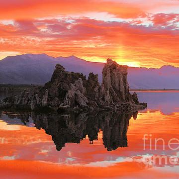 Mono Lake Tufas Near Mammoth Mountain Collection