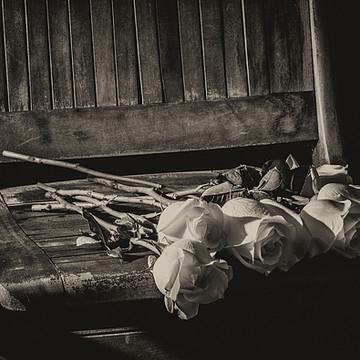 Monochrome Fine Art Photography Collection