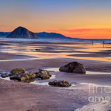 Morro Bay and Los Osos Collection