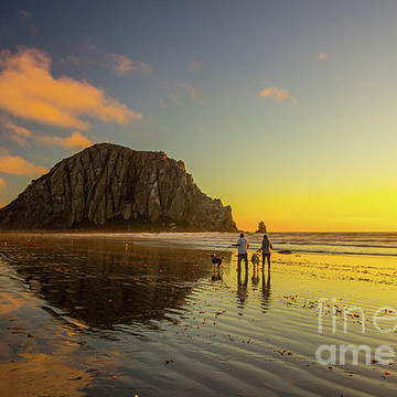 Morro Bay and the Central Coast Collection