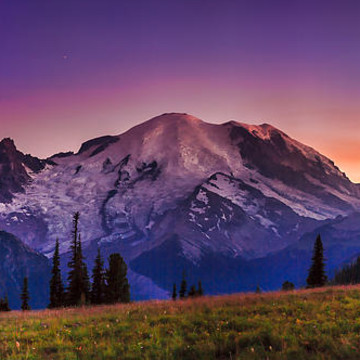 Mount Rainier National Park Collection