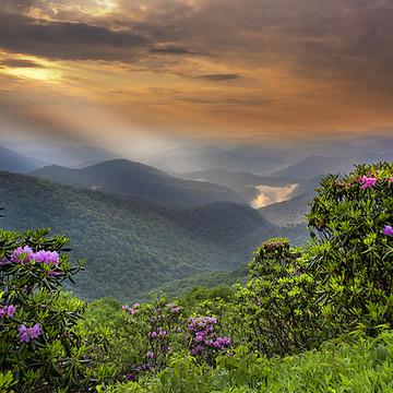 Mountain Landscape Collection