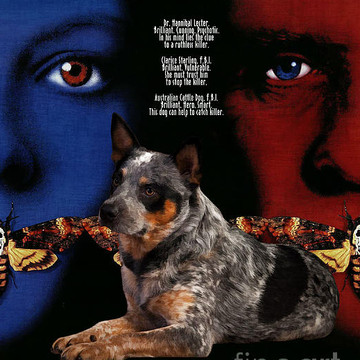Movie Poster Dog List A Collection