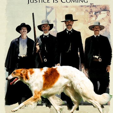 Movie Poster Dog List B Collection