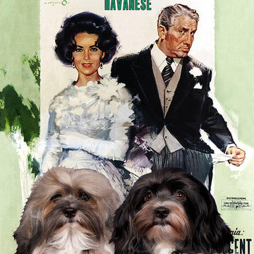 Movie Poster Dog List H Collection