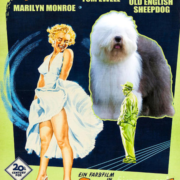 Movie Poster Dog List N and O Collection