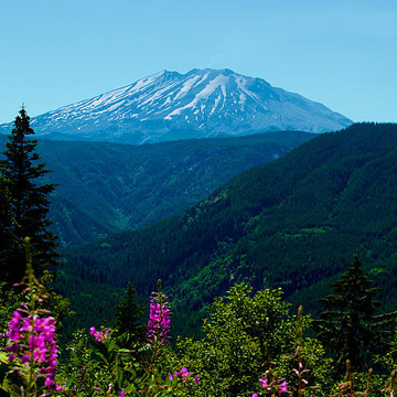 Mt. St. Helen Collection