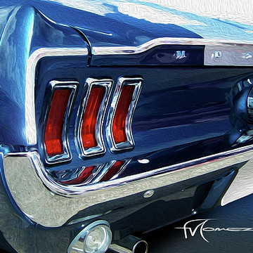 Mustangs - Ford Collection