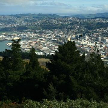 My City  Dunedin Collection