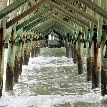 Myrtle Beach South Carolina Collection