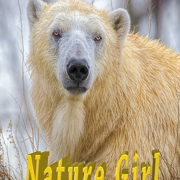 Nature Boy and Girl Favorite Animals Collection