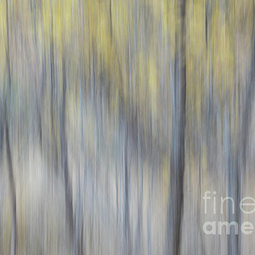 Nature motion blur abstracts Collection