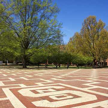 NC State University Collection