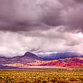 Nevada Collection