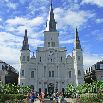 New Orleans And Louisiana Collection