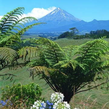 New Zealand North Collection
