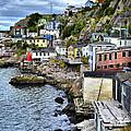 Newfoundland And Labrador Canada Collection