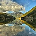 North Cascades National Park Collection