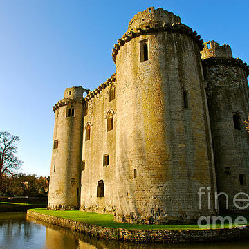 Nunney Castle Collection