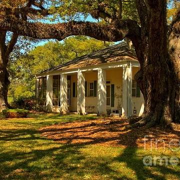 Oak Alley Plantation - Louisiana Collection