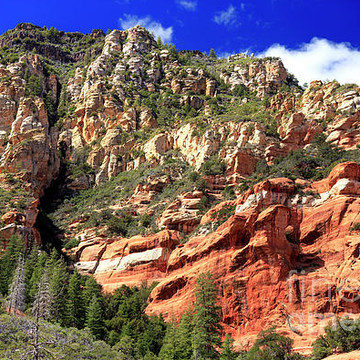 Oak Creek Canyon Collection