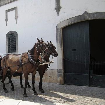 Obidos Portugal Collection