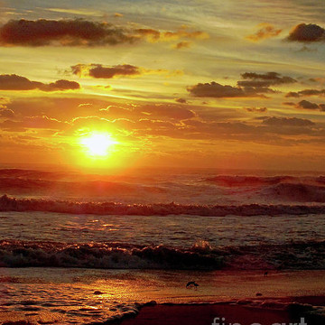 Ocean Sunrises - Ocean Related - Sunrises