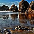 Oceanside Beach - Oregon Collection
