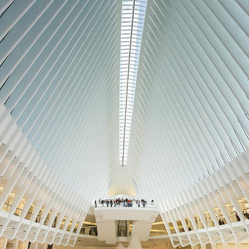 Oculus World Trade Center Collection