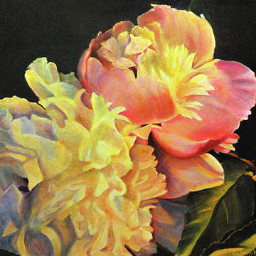 Oil Paintings - Flowers Collection