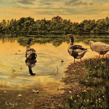 Oil Paintings-Landscapes Collection