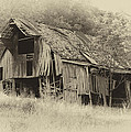 Old Barns and Houses Collection