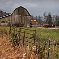 Old Barns of America Collection