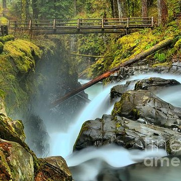 Olympic National Park - Sol Duc Area Collection