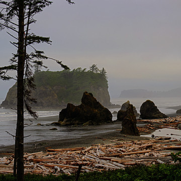 Olympic  Peninsula Collection