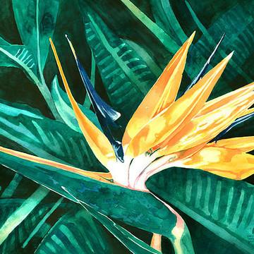 Paintings - Flowers