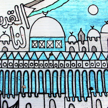 Palestine Walls Collection