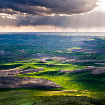 Palouse Collection