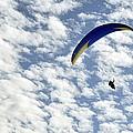 Para Gliding Collection
