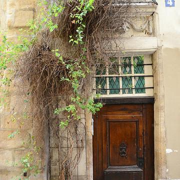 Paris Doors Windows Gates Balcony  Prints Collection