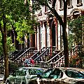 Park Slope Brooklyn NY Collection