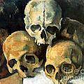 Paul Cezanne Collection