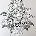 Pen and Ink Drawings Collection