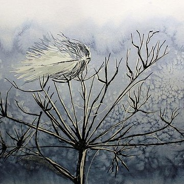 Pen and Ink Paintings Collection