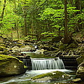 Pennsylvania State Parks Collection