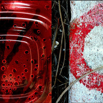 Photographic Diptychs And Triptychs Collection