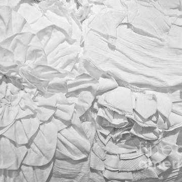 Photography - Fabric Texture Collection