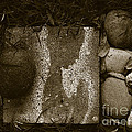 Photography - Rocks Collection