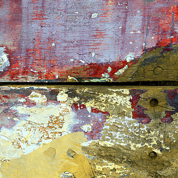 Photography - Patina Collection