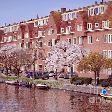 PINK SPRING in AMSTERDAM Collection